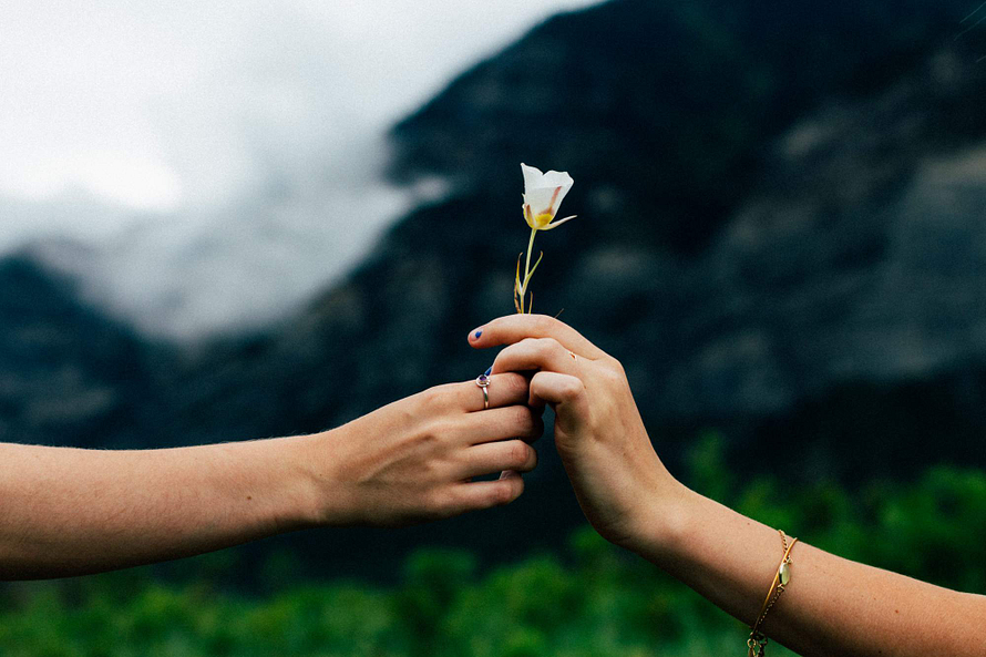 Two people in a valley, showing their happiness by holding a single white flower. Their arms are the only thing visible.